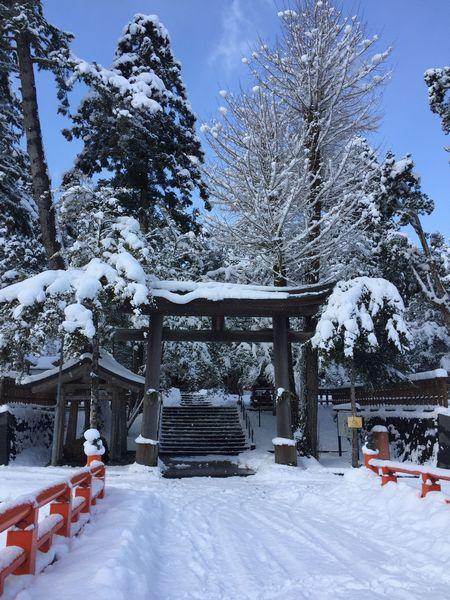 2018初詣の熊野大社