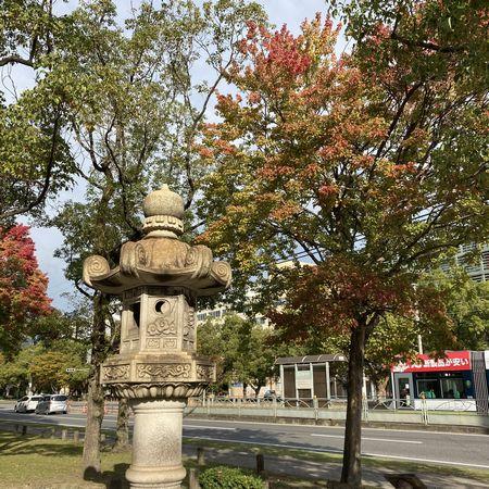 広島にも秋が来ていました